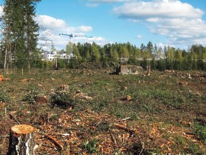 deforested-574185_640